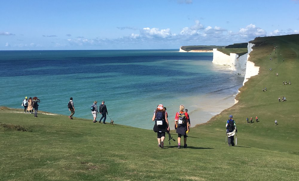 On the march: Dog walkers on the Seven Sisters in East Sussex mix with participants on August's 100k walk from Eastbourne to Arundel, organised by Action Challenge