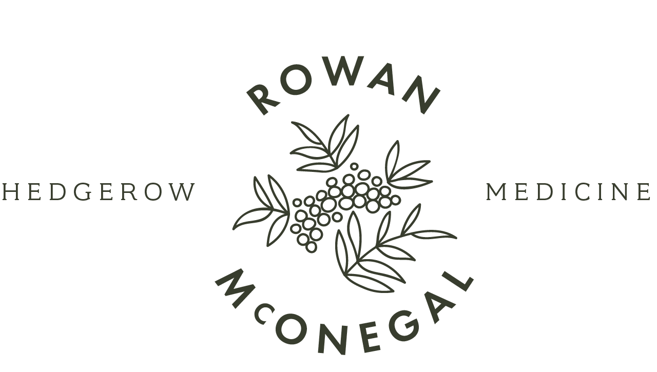 Rowan McOnegal Hedgerow Medicine