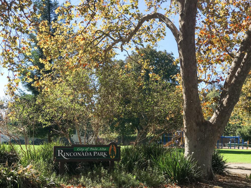 Rinconada Park Palo Alto Blu Skye Media-2220-X2.jpg