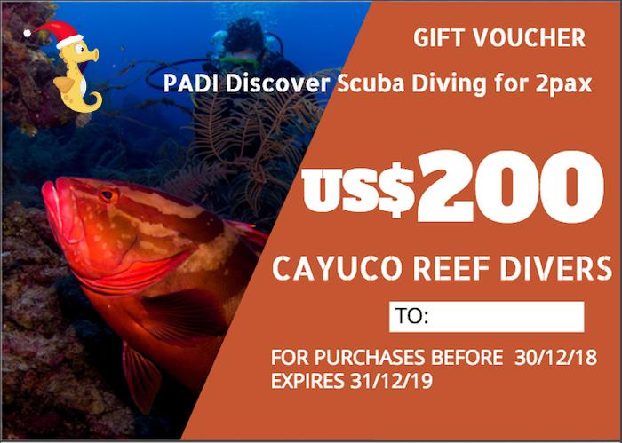 Discover Scuba Diving    For 2 persons. Taxes included.    Para 2 personas. Impuestos incluídos.