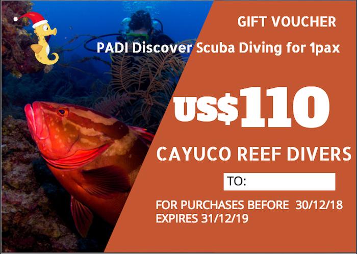 Discover Scuba Diving    For 1 person. Taxes included.    Para 1 persona. Impuestos incluídos.