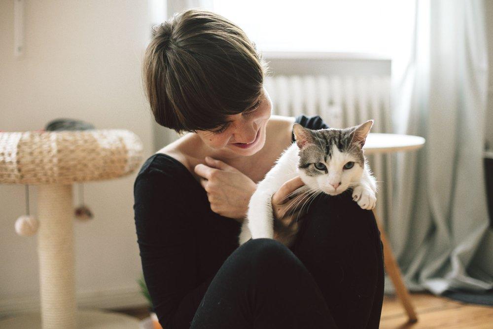 Cats are connoisseurs of comfort. - James Herriot