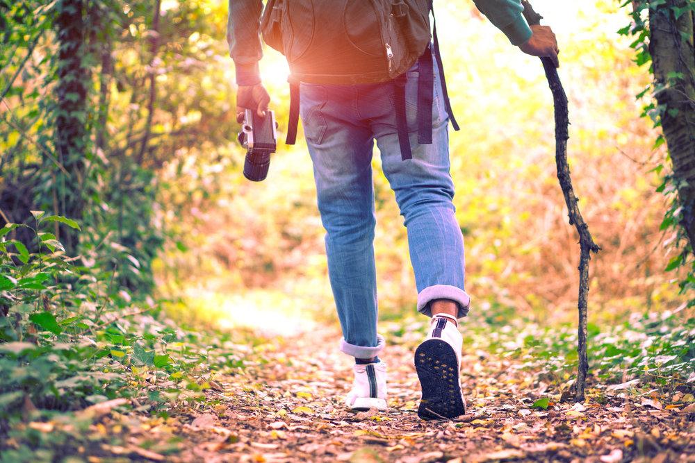 man walking in woods with camera.jpg