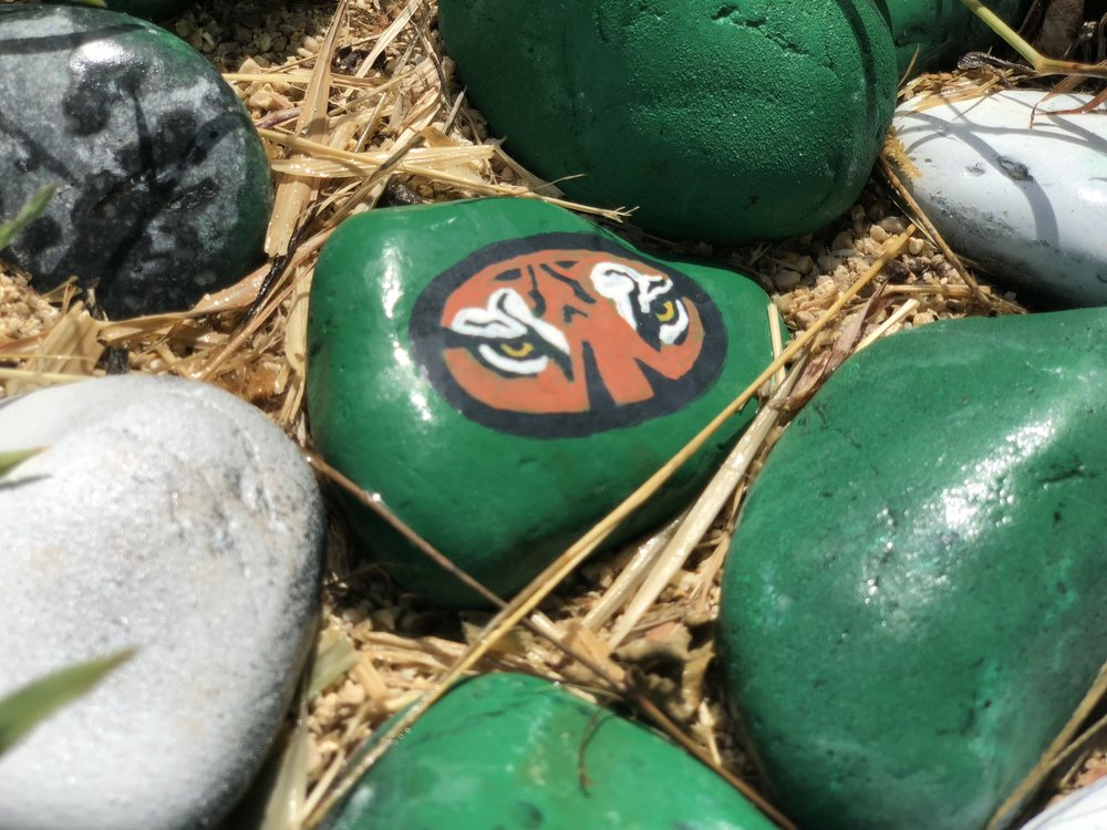 A painted green stone with a face of a tiger on it, which is Ewa Makai Middle School's mascot.