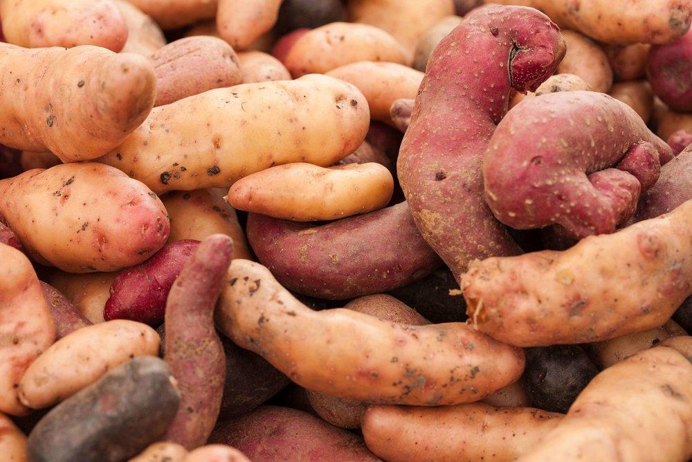 potatoes_1_kettles copy.jpg