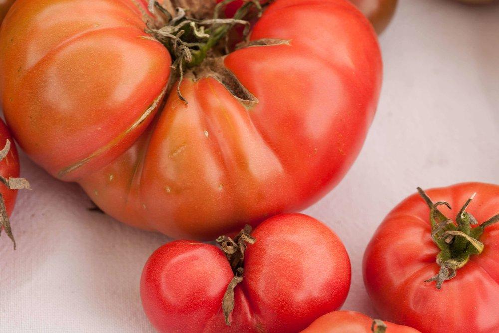 tomatoes_1_kettles copy.jpg
