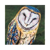 """Sir Gratitude, Affirming Owl series, Acrylic, 6""""x6"""" gallery (self-standing) canvas, $120, ORIGINAL AVAILABLE & Prints Available for $50"""