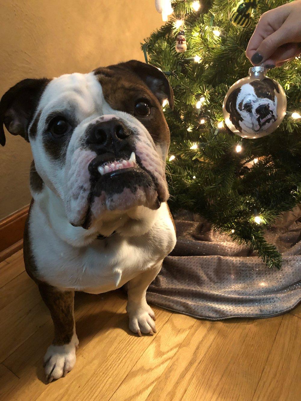 OrnamentBulldog.jpg