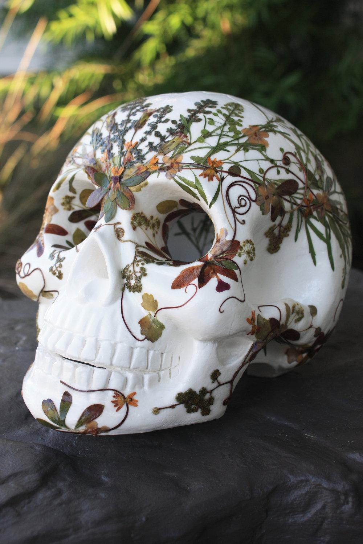 botanical-skull-01.jpg