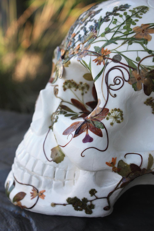 botanical-skull-03.jpg