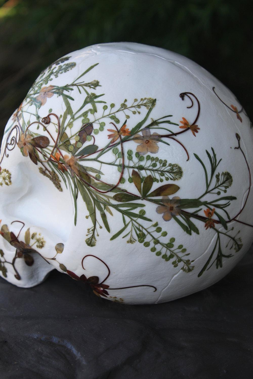 botanical-skull-05.jpg