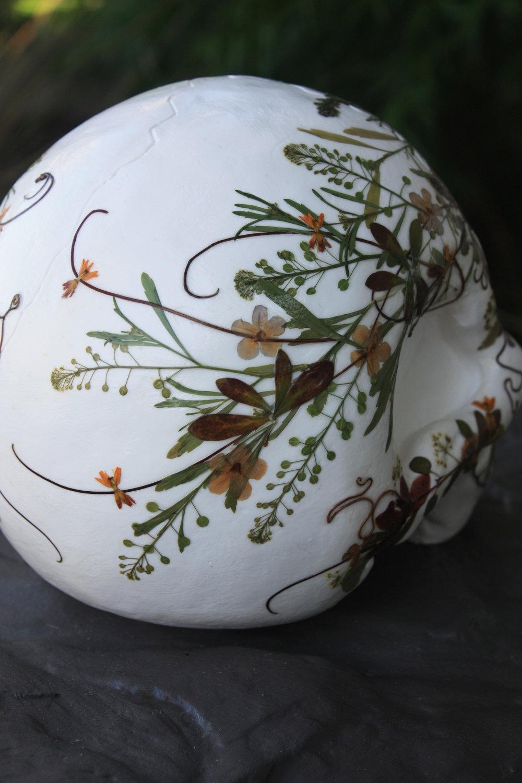 botanical-skull-06.jpg
