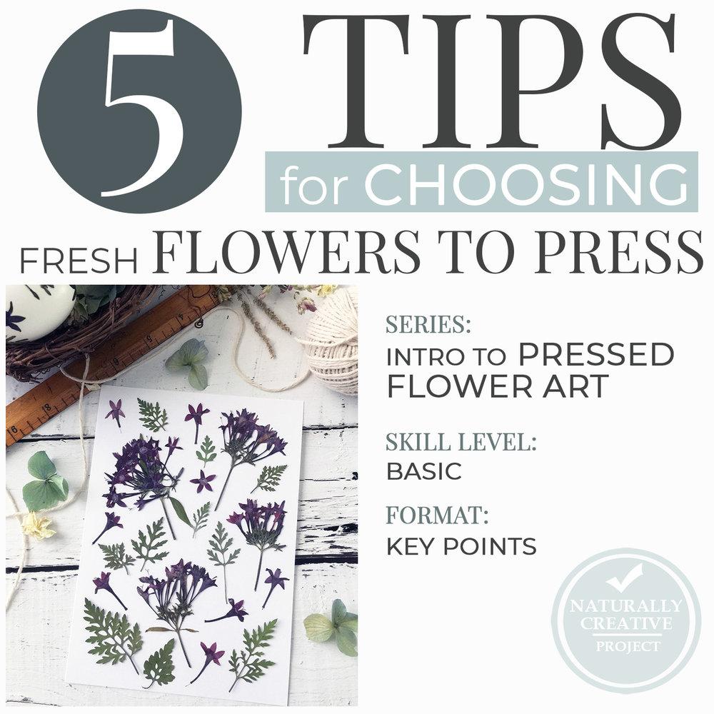 5tips-choosing-flowers-pressed-flower-art-wB.jpg
