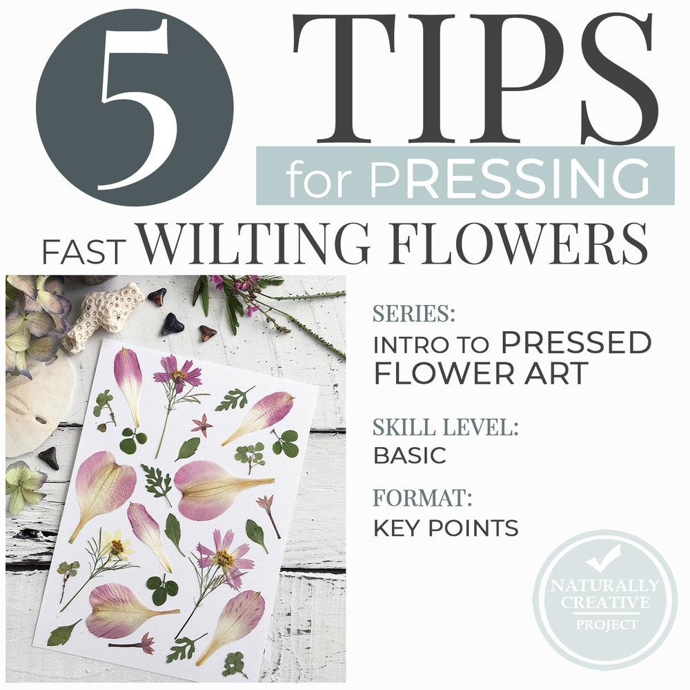 5tips-wilting-flowers-pressed-flower-art-wB.jpg