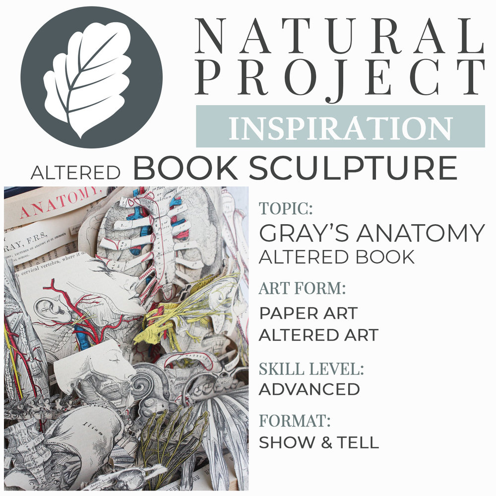 grays-anatomy-book-sculpture-intro.jpg