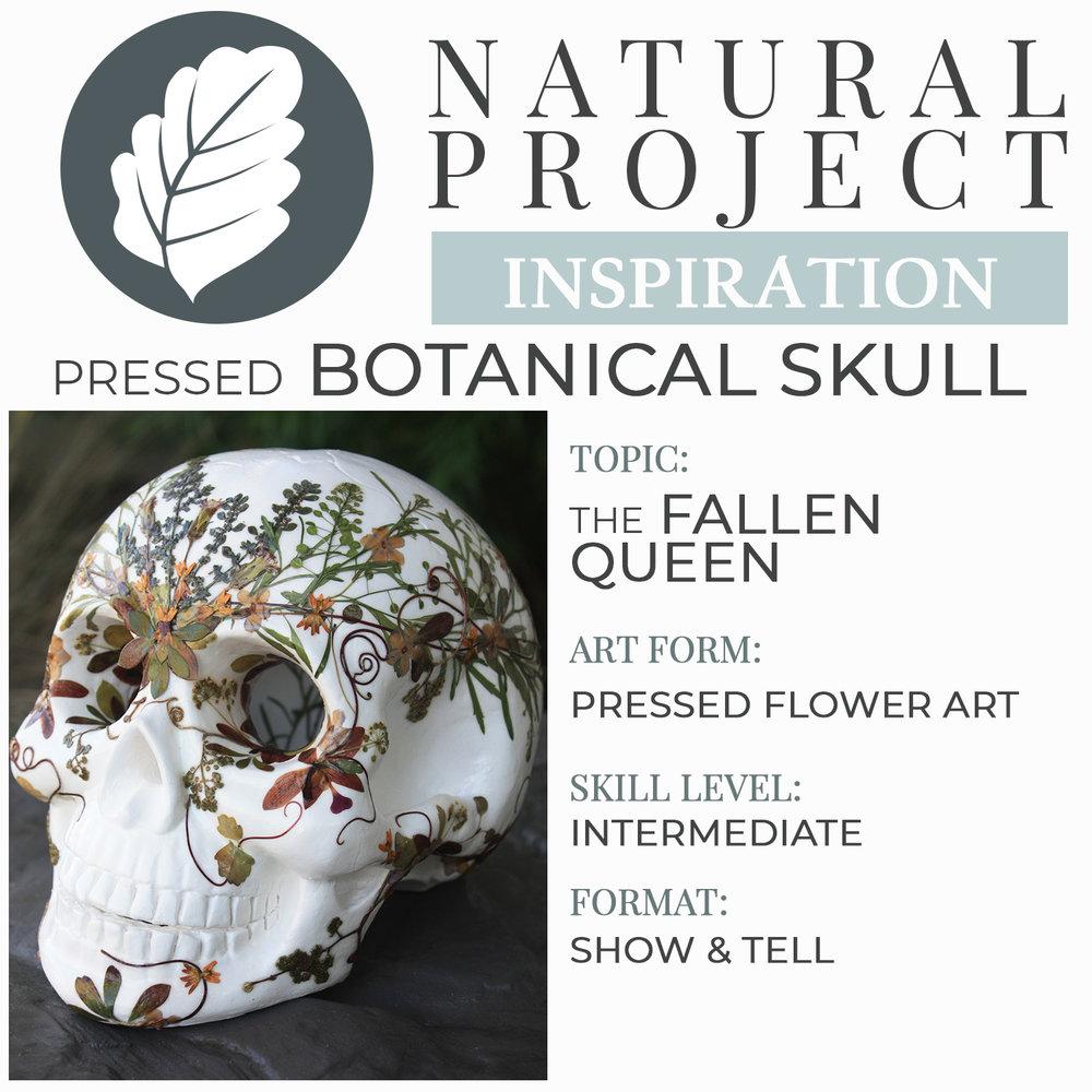 botanical-skull-pressed-flower-art-01.jpg
