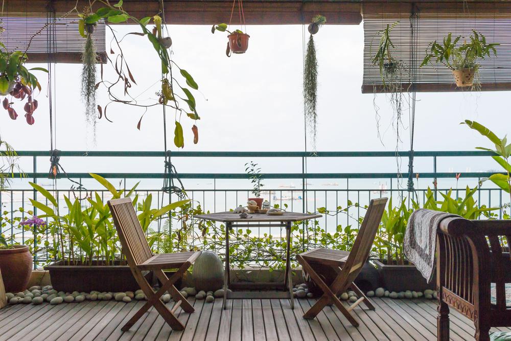 My Mother's Garden - My kind of urban balcony garden