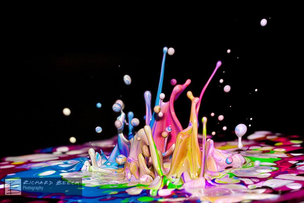 paintbounceLRPSPRINTweb.jpg