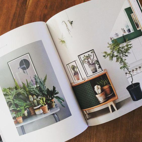 wonderplants 2: your urban jungle