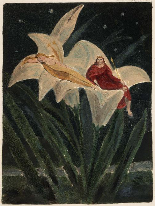 fairies-on-lily-william-blake.jpg