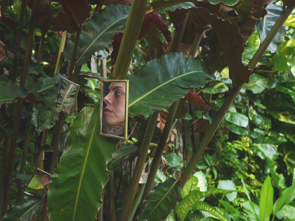 virtual-images-lane-mirrors.jpg