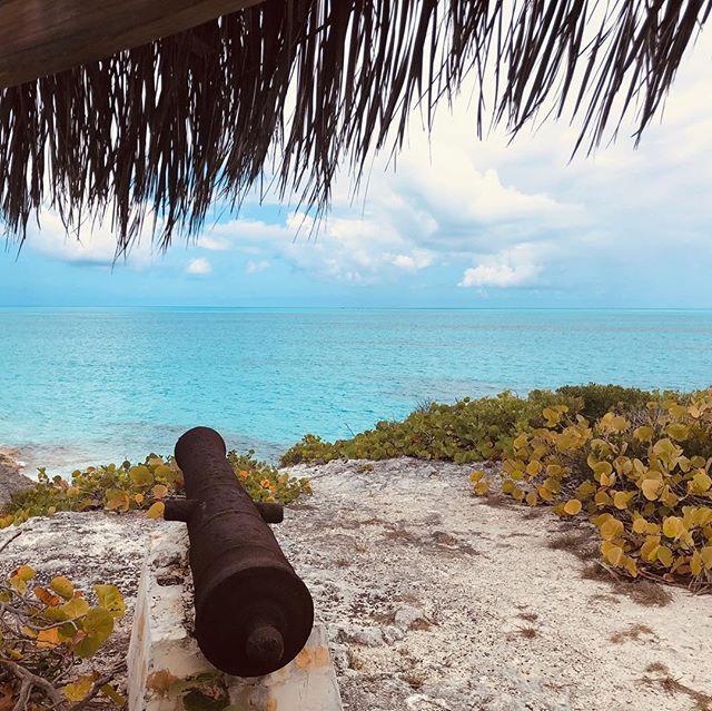 Exploring the island.  #plasticfree #photooftheday #happy #svnovasatus