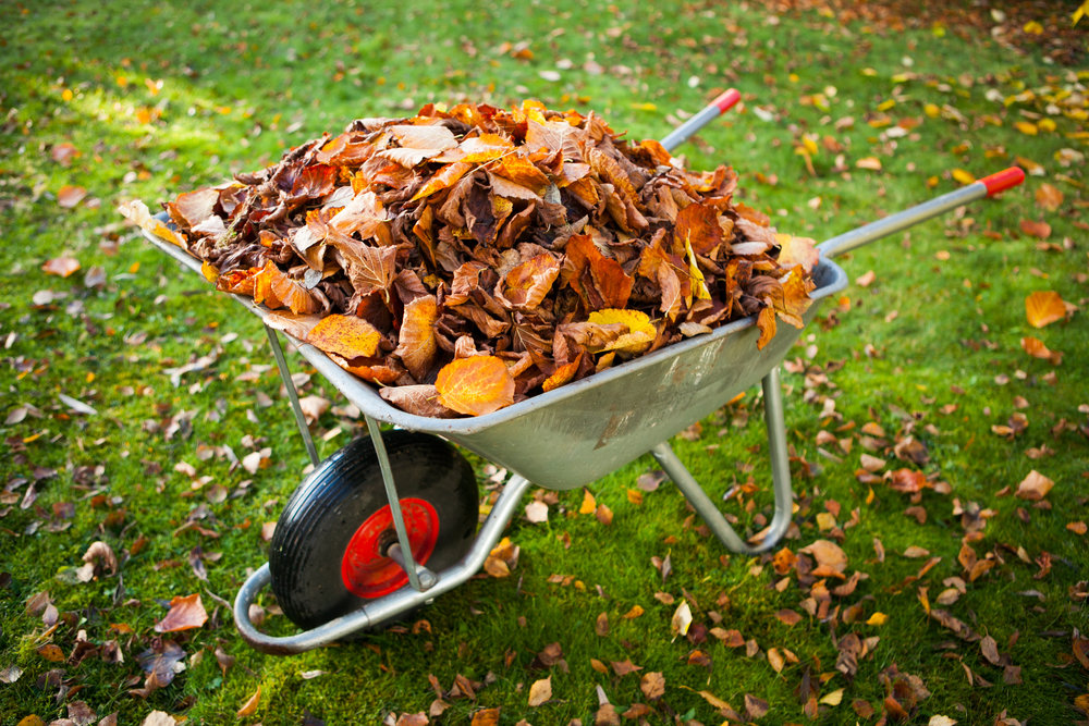 Additional Services: - Mowing, Spring and Fall Cleanup / Mulch, Problem Area Improvement, Creative Garden Design and Installation, Customized Maintenance Programs, Underground Watering Systems, Tree Work
