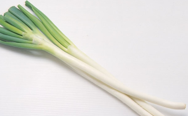 Stalks of the white base of green onion