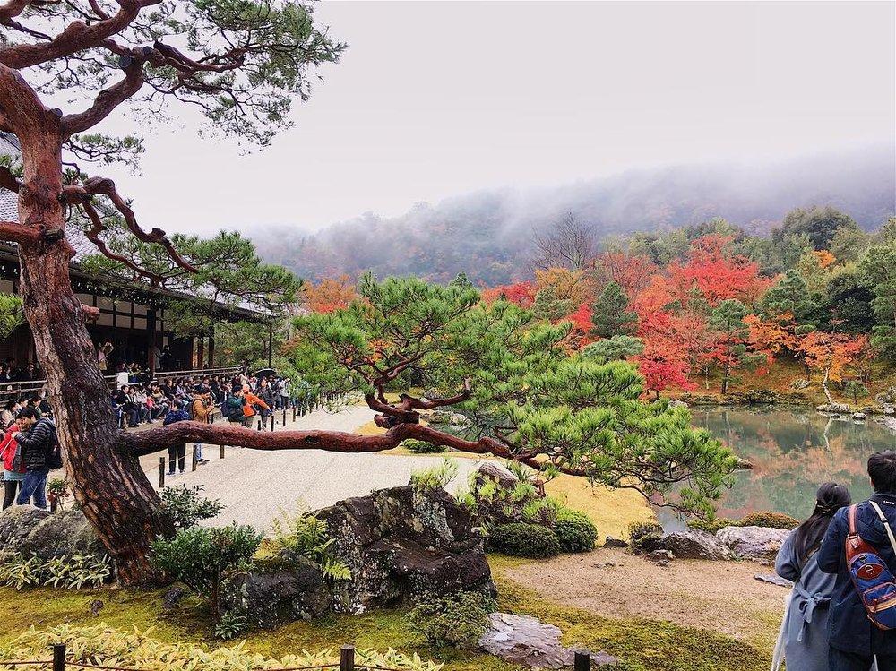 Kyoto's Sprawling Zen Temple - Tenryu-Ji -