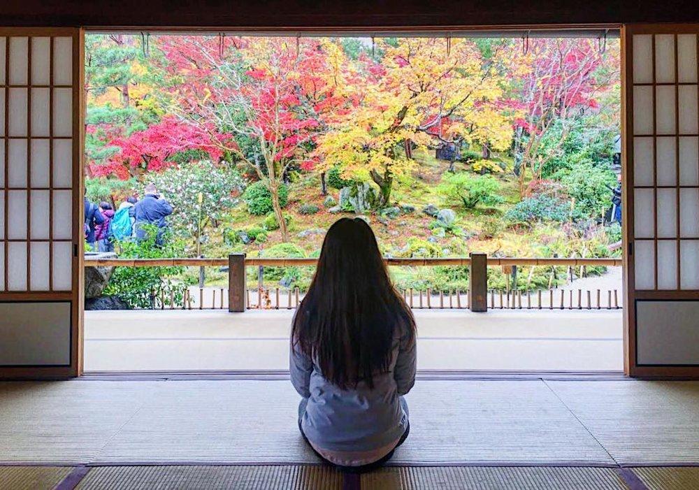 Osaka Castle 2.jpg