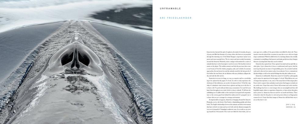 Antarctica_v13_3.jpg