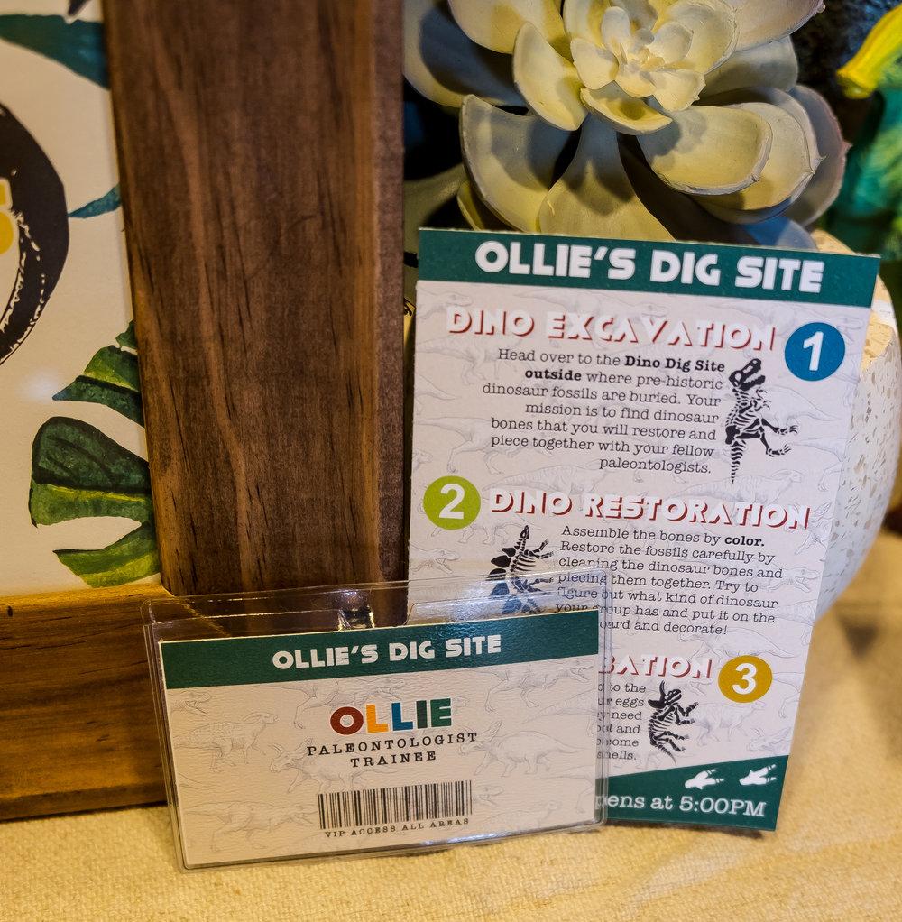 Ollie-63.jpg