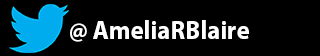 TwitterAmelia-Panel.jpg