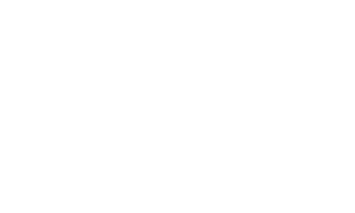 THE BDSM COACHES