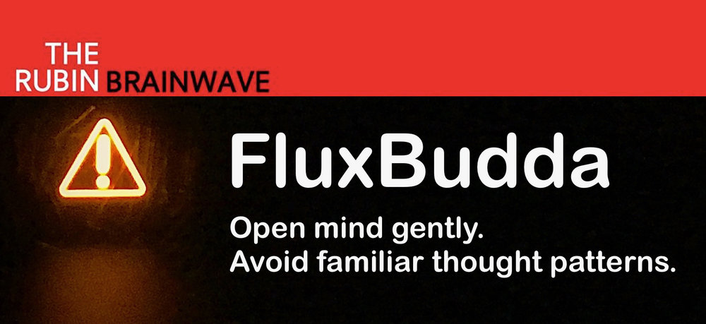 FluxBuddha_VW.jpg