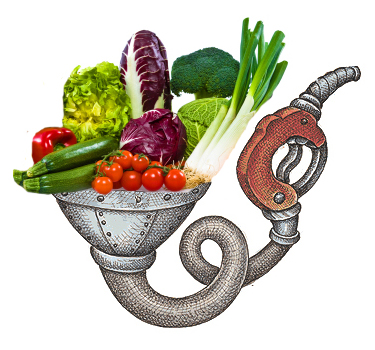 foodfuel.jpg