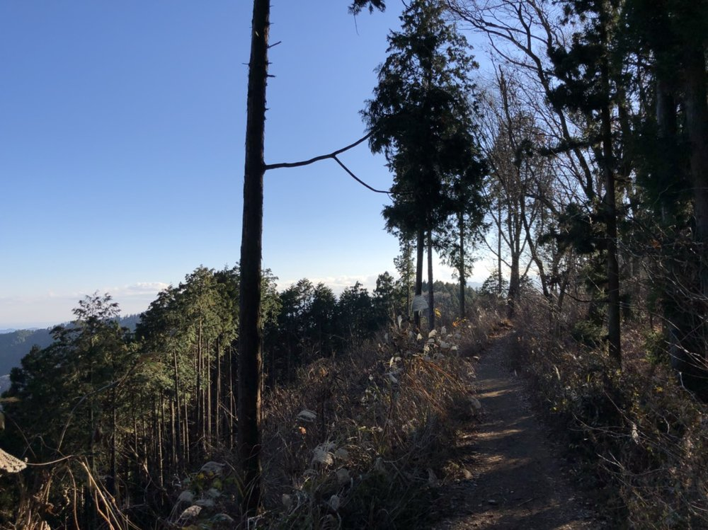 Windy traverse between Kagenobu and Takao
