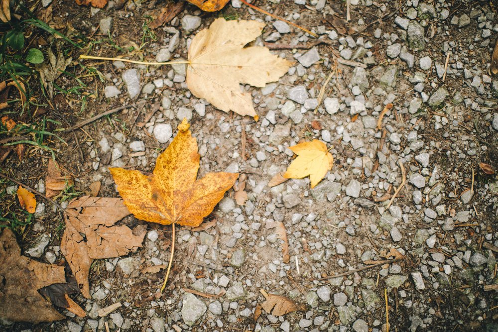 Oktober_Ritual_Loslassen-min.jpg