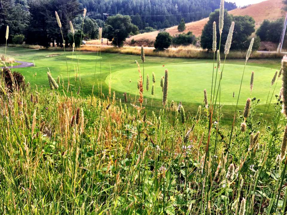Golf Course 5.jpg