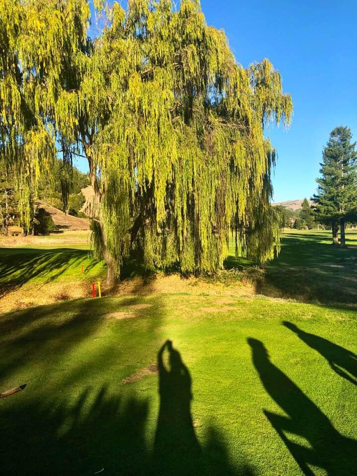Golf Course 11.jpg