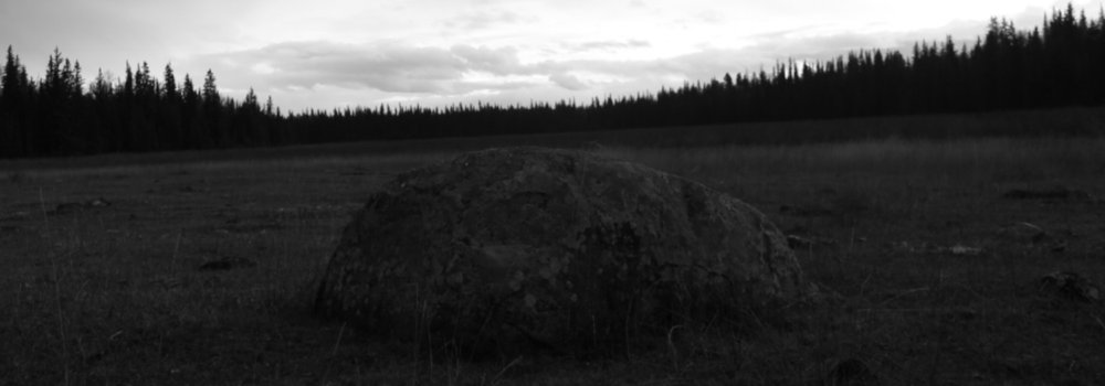 Like a big black and white rock