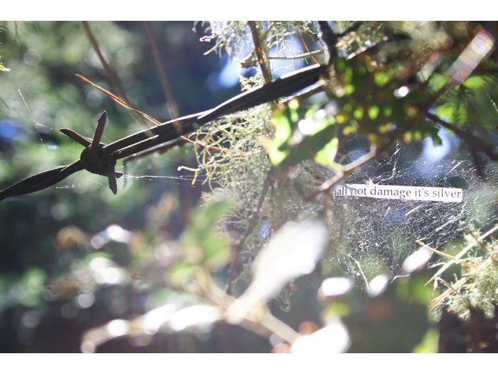 ScappettoneNeosuprematistWebtextsSlide5.jpg