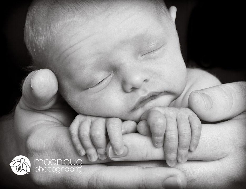 newborn black and white