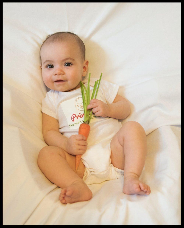 soph carrot.JPG