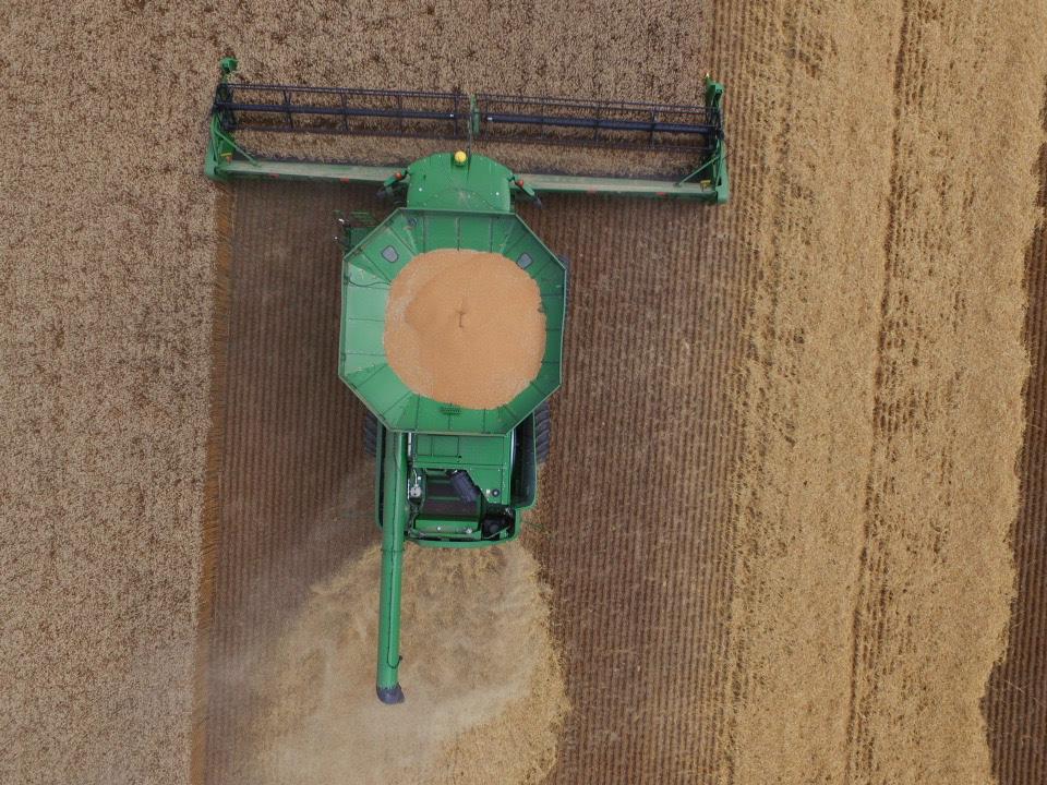 WheatM6Above-7.12.16_FINAL.jpg