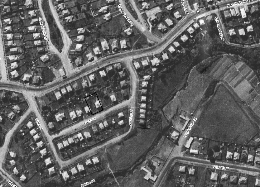 1946 aerial imagery