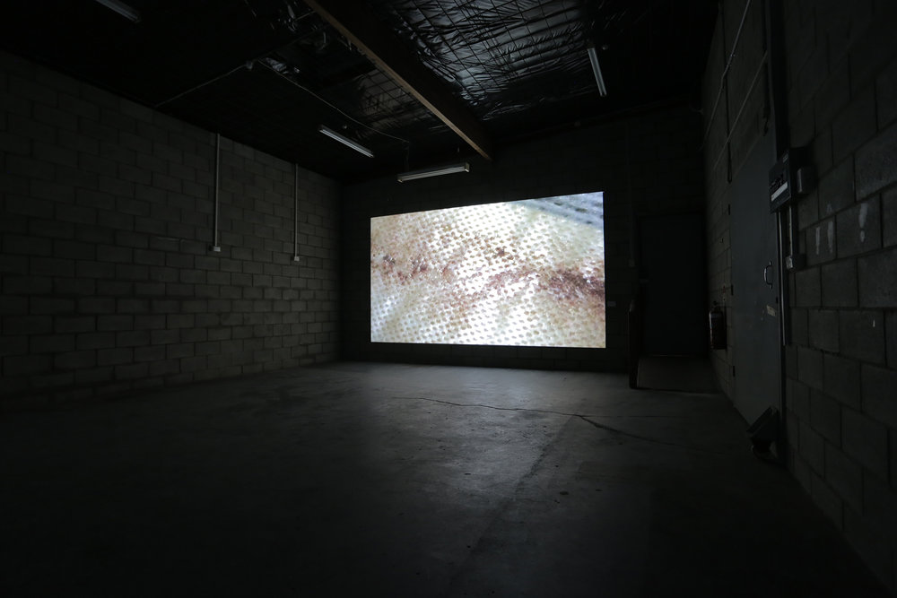 Bloodstain  2016, single channel HD digital video projection.  Photograph by Llewellyn Millhouse.
