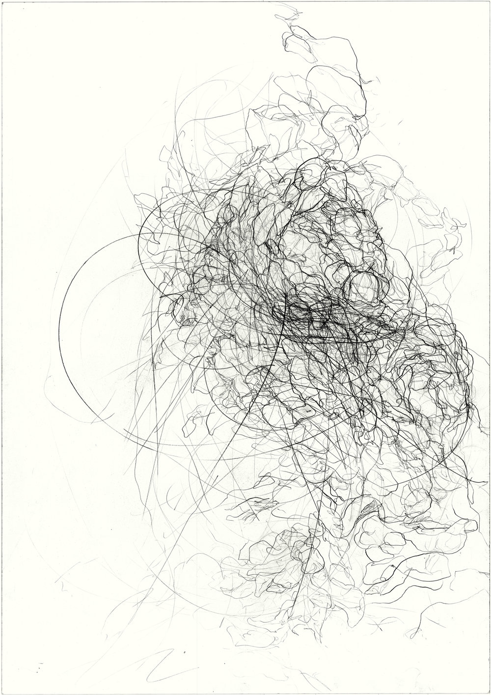 Absorb  2011, pencil on paper, 84.1 cm x 59.5 cm.