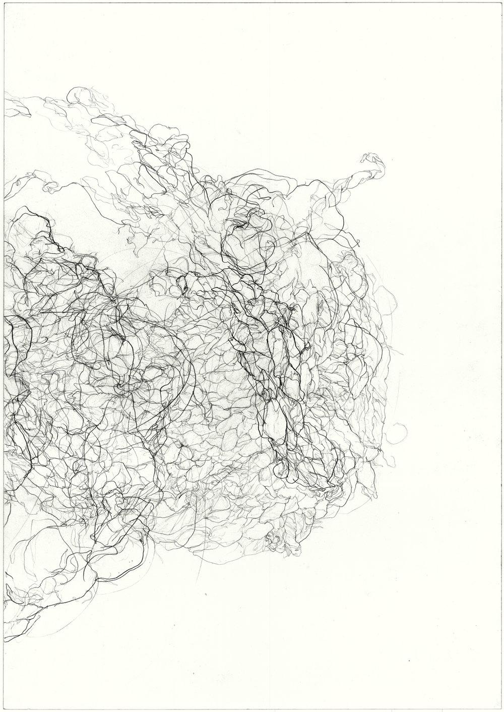 Strangle  2011, pencil on paper, 84.1 cm x 59.5 cm.