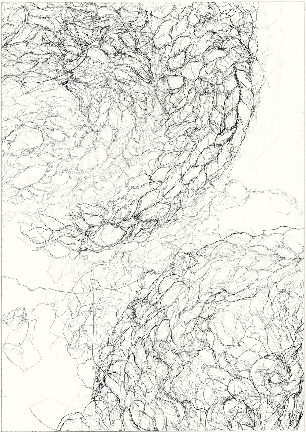 Dyskinesia  2011, pencil on paper, 84.1 cm x 59.5 cm.